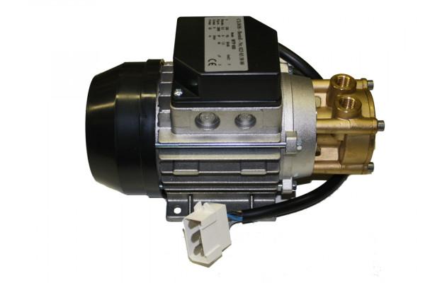 Ceme Wasserpume, 230 Volt, hoher Kasten, Kond. innen, Messingkopf, MTP 600, Stecker CLOOS